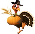 Thanksgiving-web